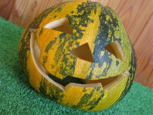 種かぼちゃ