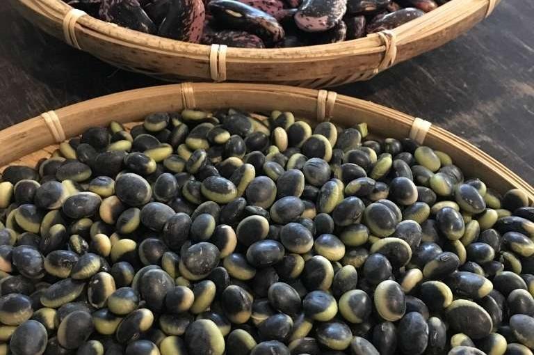 鞍掛豆と花豆